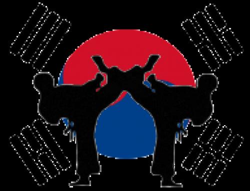 Taekwondo Chon Ji Freiberg e.V.
